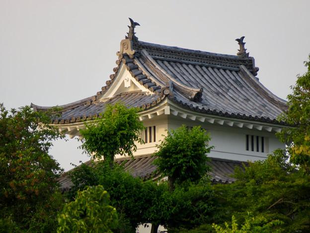 犬山城天守閣前の門の屋根のシャチホコ - 2
