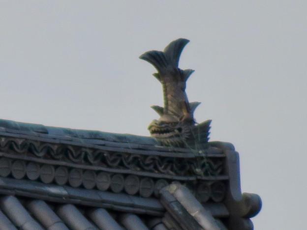 犬山城天守閣前の門の屋根のシャチホコ - 3