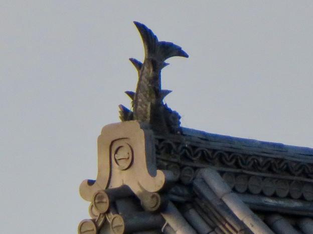 犬山城天守閣前の門の屋根のシャチホコ - 4
