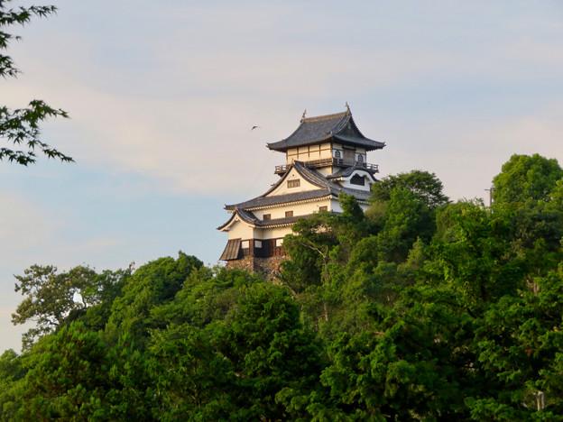 夕暮れ時の犬山城 - 3