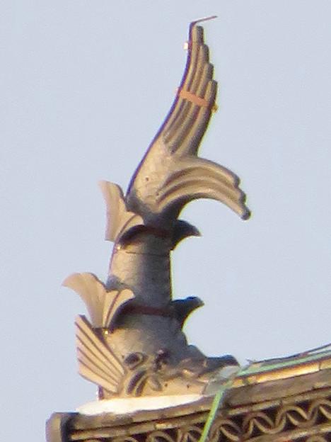 様々な角度から見た犬山城に新たに設置されたシャチホコ - 6