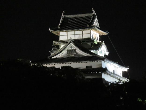木曽川沿いから見た夜の犬山城