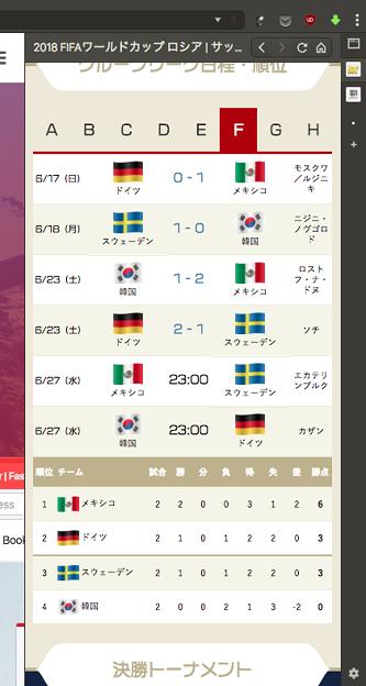 Vivaldi WEBパネル:サッカーキングのワールドカップ特集 - 2