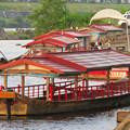 Photos: 木曽川沿いから見た鵜飼い No - 2