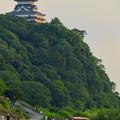 写真: 木曽川沿いから見た鵜飼い No - 5