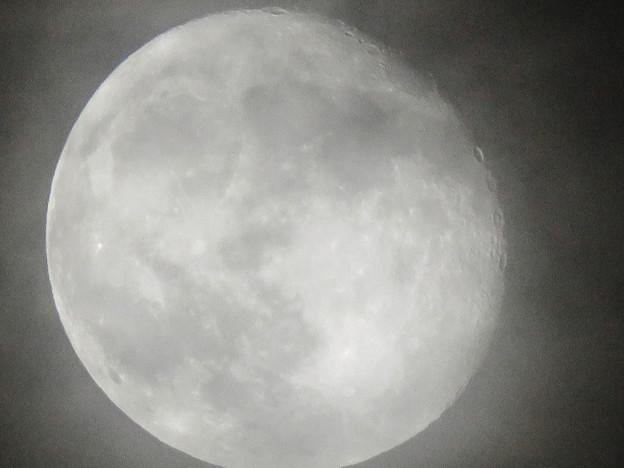 薄曇り越しに見た満月 - 2