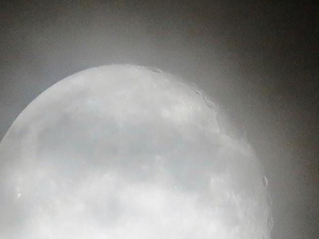 写真: 薄曇り越しに見た満月 - 8