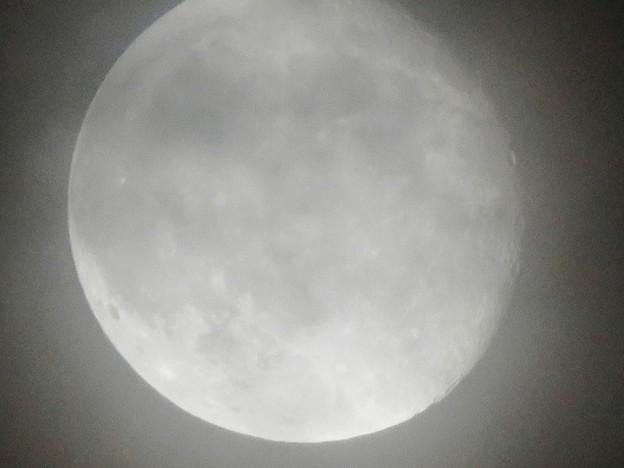 写真: 薄曇り越しに見た満月 - 9