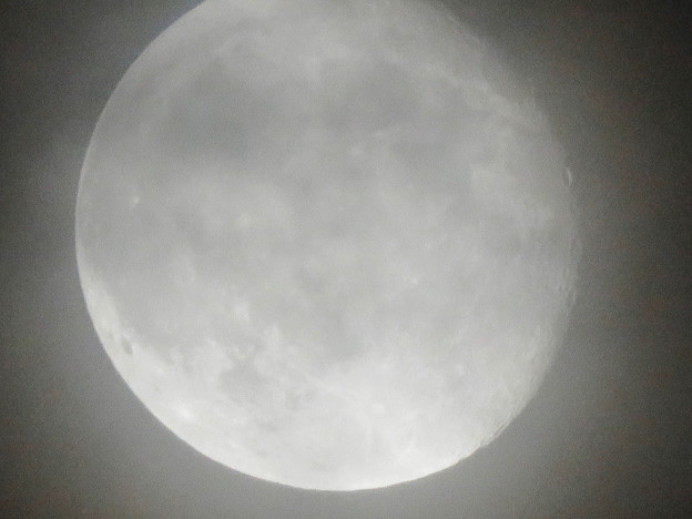 Photos: 薄曇り越しに見た満月 - 9