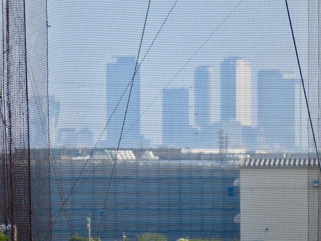 フレッシュパーク展望台から見た名駅ビル群 - 5