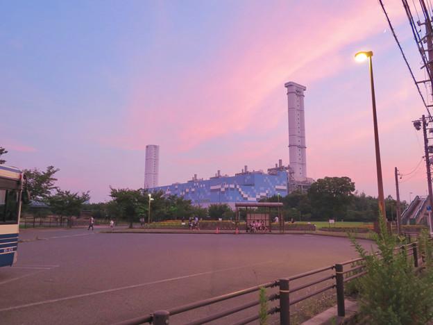 間近から見た中部電力 新名古屋火力発電所 - 3:ワイルドフラワーガーデン停留所