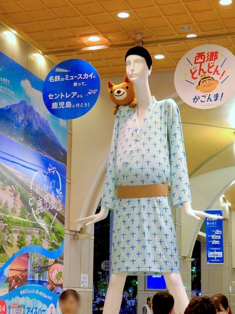 ナナちゃん人形:セントレア - 鹿児島間の航空路線開通をPR - 6