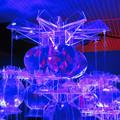 アートアクアリウム展 2018 No - 125
