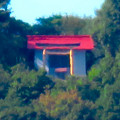 Photos: 桃花台ニュータウンから見た尾張白山神社 - 3