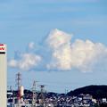 Photos: 落合公園 水の塔から見た景色 - 23:夏らしい雲