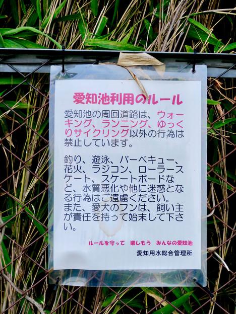 愛知池 No - 8:池沿い周回道路に関する注意書き