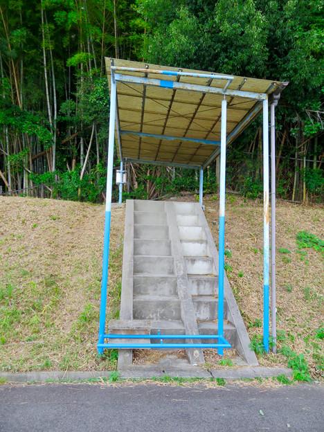 愛知池 No - 11:謎の階段