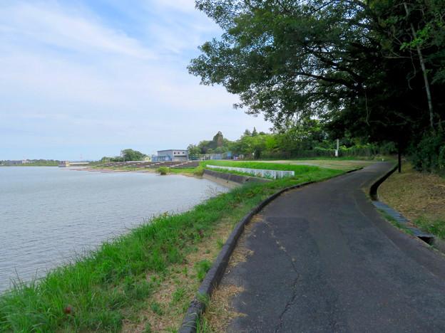 愛知池 No - 13:池沿いのランニングコース