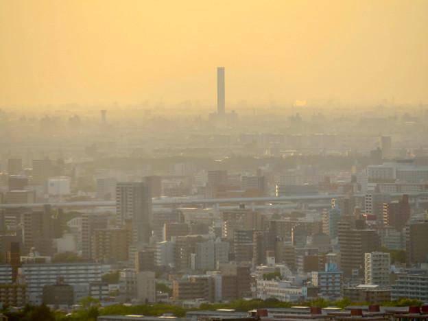 東山スカイタワーから見た景色:三菱電機稲沢製作所 - 1