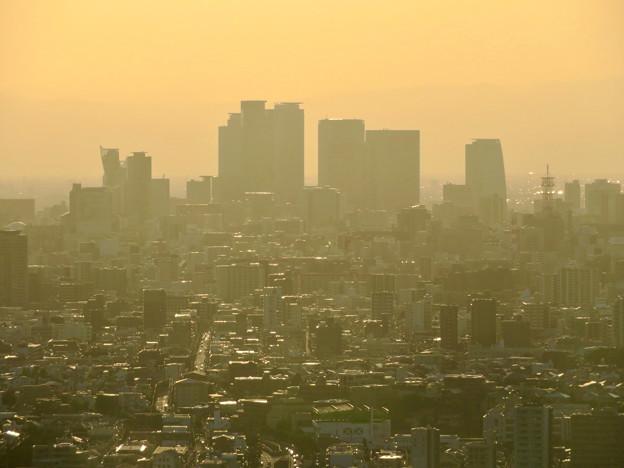 東山スカイタワーから見た景色:名駅ビル群 - 1