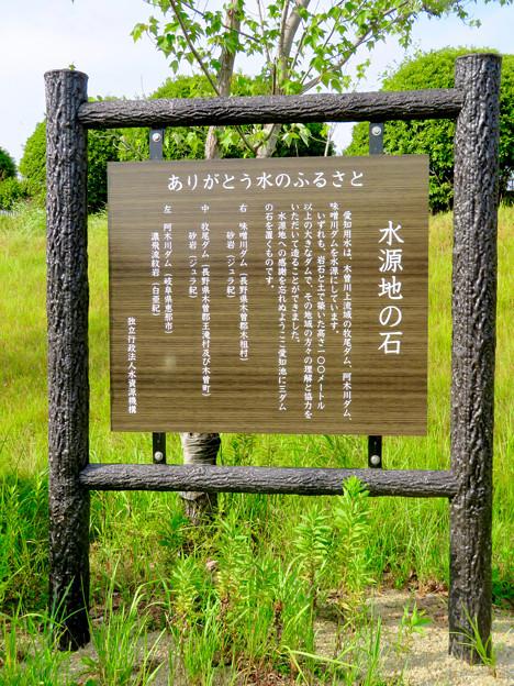 愛知池 No - 54:水源地の石