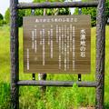 写真: 愛知池 No - 54:水源地の石
