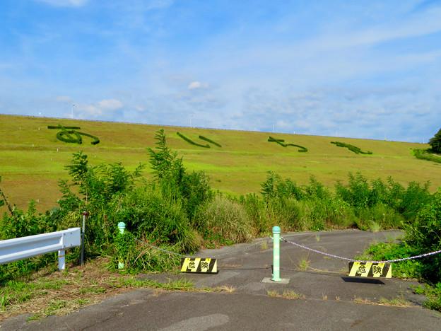 写真: 愛知池 No - 62:斜面に「あいち池」の文字