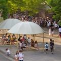 Photos: 東山動植物園ナイトZoo 2018 No - 8:ラーテルのアニマルトークに集まってた沢山の人たち