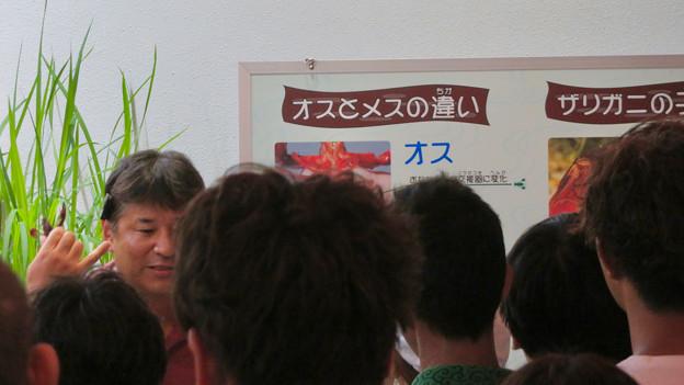 東山動植物園ナイトZoo 2018 No - 19:メダカ館で行われたザリガニに関するアニマルトーク