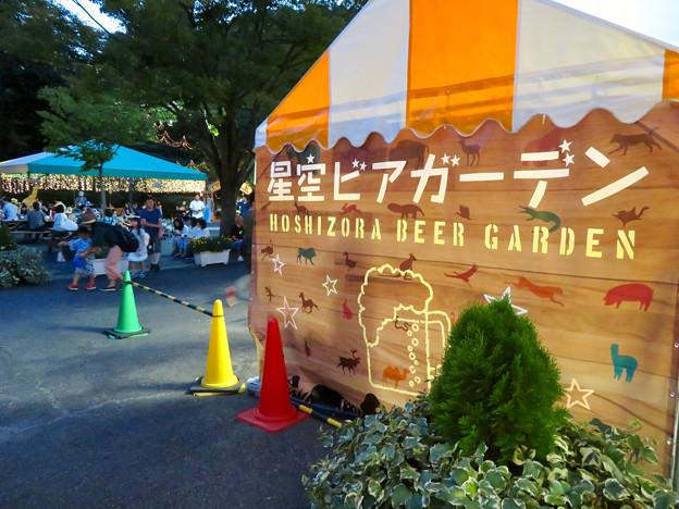 東山動植物園ナイトZoo 2018 No - 37