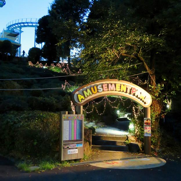 東山動植物園ナイトZoo 2018 No - 45