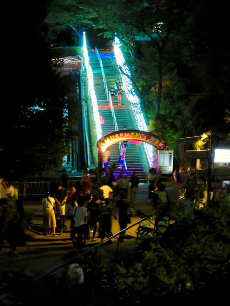 東山動植物園ナイトZoo 2018 No - 50:遊園地へと続く階段のイルミネーション