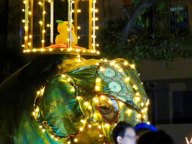 東山動植物園ナイトZoo 2018 No - 56:「ペラヘラ祭」風の装飾がなされてた象の像の上にズーボ