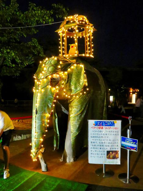 東山動植物園ナイトZoo 2018 No - 58:スリランカ「ペラヘラ祭」風の装飾がなされてた象の像
