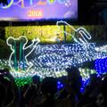 Photos: 東山動植物園ナイトZoo 2018 No - 66:コアラとネコ科動物のイルミネーション