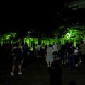 Photos: 東山動植物園ナイトZoo 2018 No - 70:アカカンガルー舎の周りにいた人たち