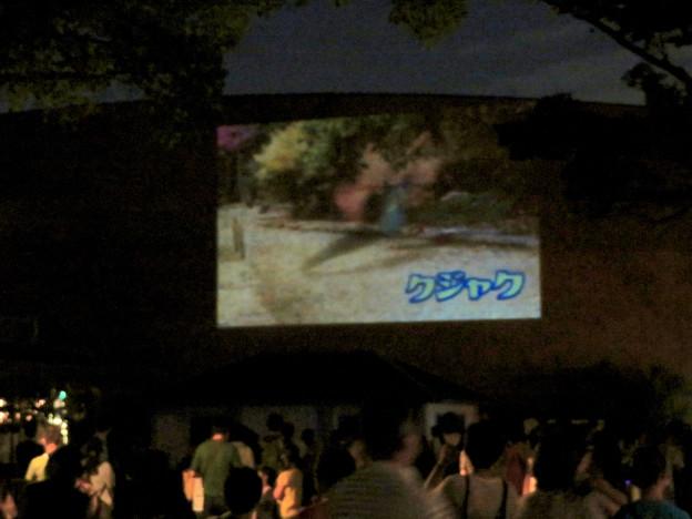 東山動植物園ナイトZoo 2018 No - 72:動物開館の壁で行われてた「ひがしやま夜空シアター」