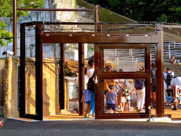 東山動植物園 2018年8月 No - 26:覆いや見学ゾーンができたペンギン舎