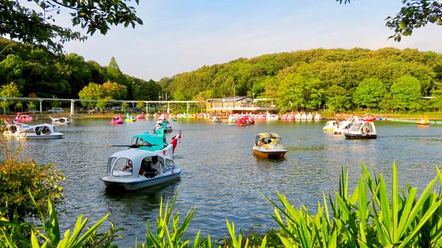 東山動植物園 2018年8月 No - 33:沢山の人がボートに乗っていた上池