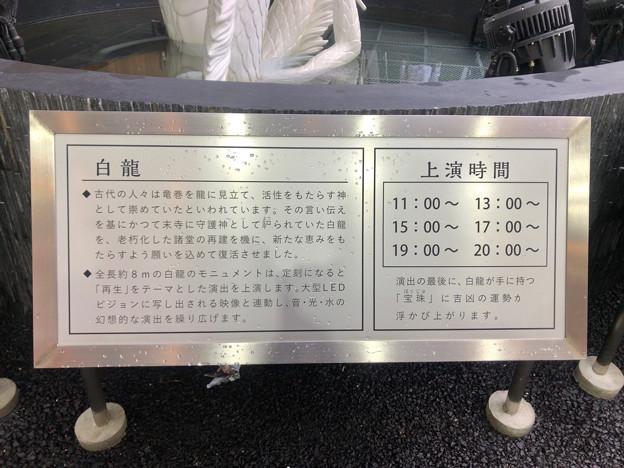 万松寺:白龍モニュメントの説明と上映時間