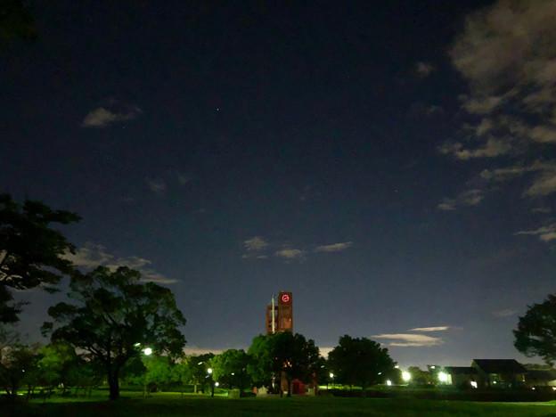 iPhone 8で撮影した夜の落合公園