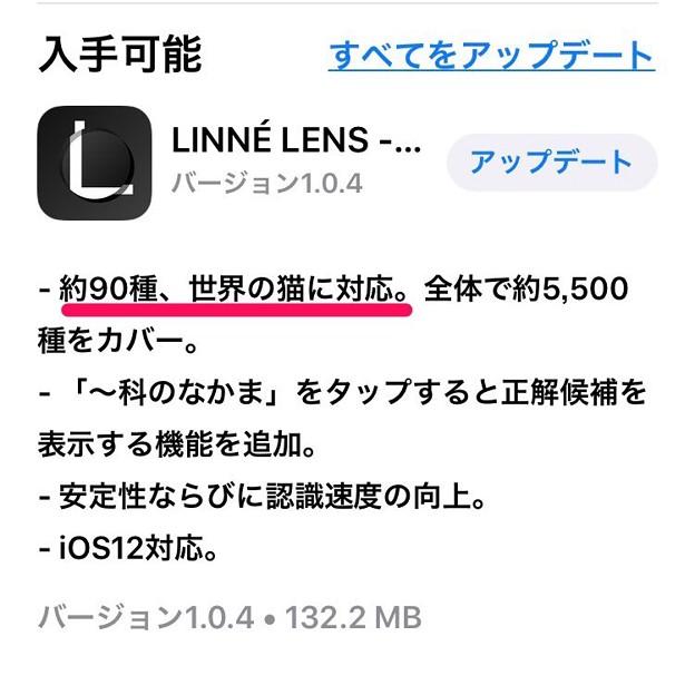 リンネレンズが最新版(1.0.4)で猫の種類(90種)判別に対応!?