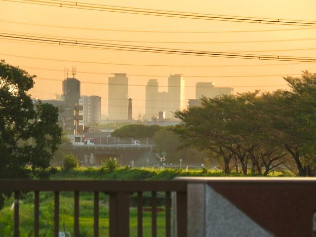 出川(てがわ)橋から見えた名駅ビル群 - 1