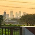 写真: 出川(てがわ)橋から見えた名駅ビル群 - 1