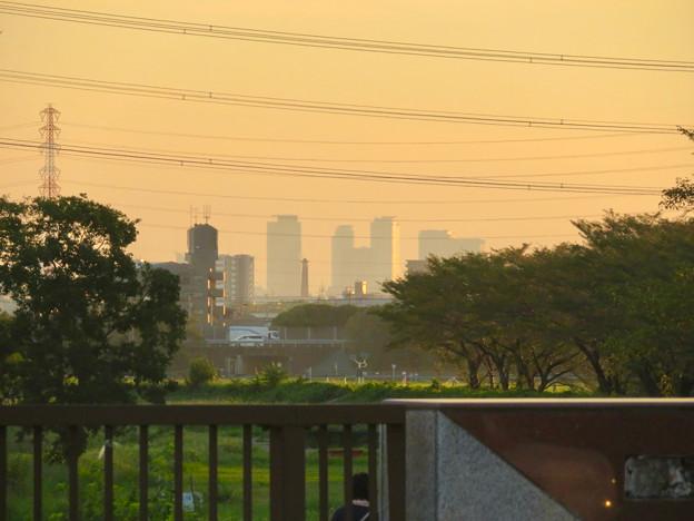 出川(てがわ)橋から見えた名駅ビル群 - 2