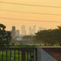 写真: 出川(てがわ)橋から見えた名駅ビル群 - 2