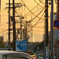 Photos: 一瞬瀬戸デジタルタワーかと思った、夕焼けで輝く鉄塔 - 1