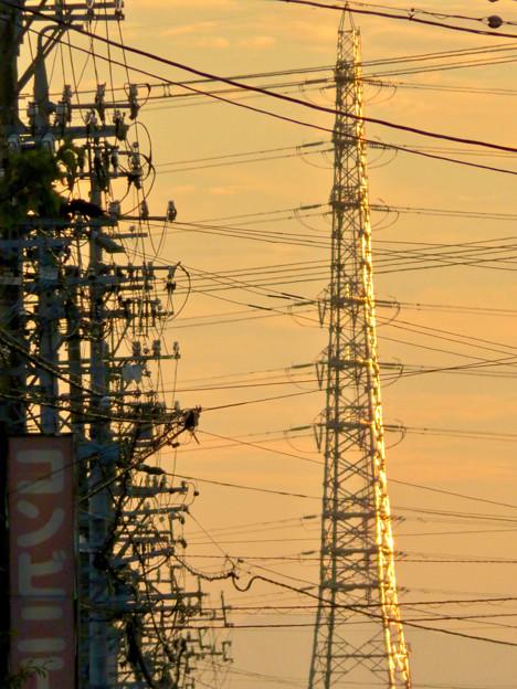 写真: 一瞬瀬戸デジタルタワーかと思った、夕焼けで輝く鉄塔 - 6