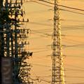 Photos: 一瞬瀬戸デジタルタワーかと思った、夕焼けで輝く鉄塔 - 6