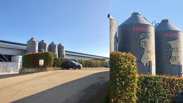 Camera7で撮影した「くりの木ランチ」のタンクに描かれた豚 - 1